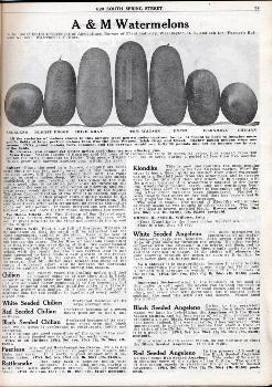 Aggeler & Musser Watermelons 1920