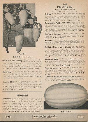 Aggeler & Musser 1944 catalog p.27