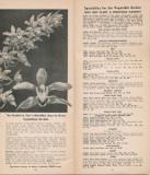 Fraser's Sun Ripened Seeds 1940s
