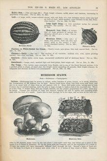 Germain Seed Company 1888, p. 31