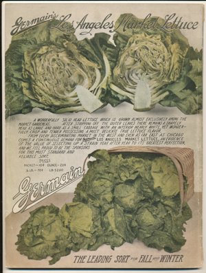 Germain Seed Co. 1916 Market Lettuce