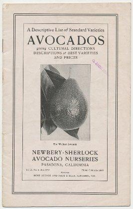 Newbery Sherlock Avocado Nurseries 1917 catalog cover