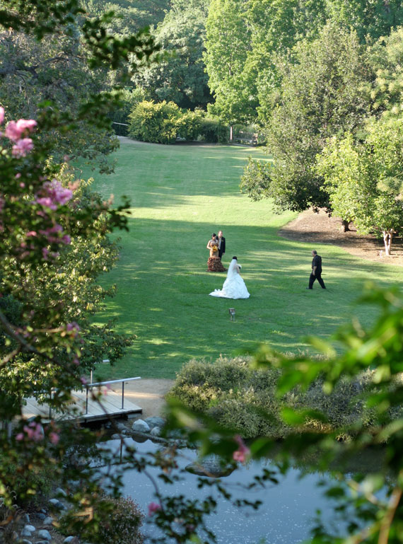 weddings the arboretum